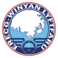 Lower Vinyan Aviation logo.png