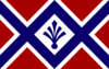 Flag of Orioni army.png
